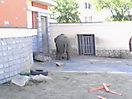 Zoo_70