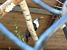 Zoo_92