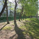 Я и Челябинск